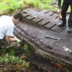 LCA Restoration Project (6).