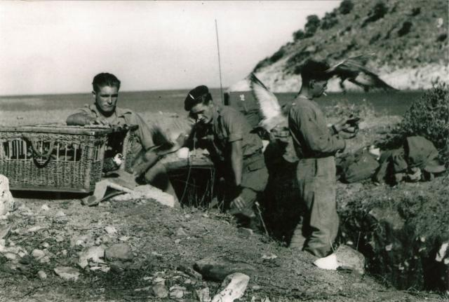 No. 2 Commando Signals - Sarande Oct 1944