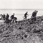 Dutch Commandos from 10IA Cdo 2 troop