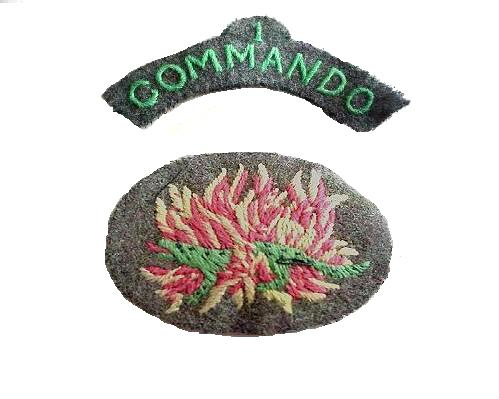 Original No 1 Commando Salamander arm patches