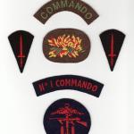 No1 Commando Insignia group.