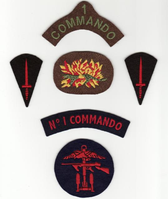 No1 Commando Insignia group.