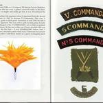 No5 Commando