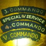 Commando Insignia collection of Ted Land