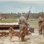 42 Commando RM Borneo and Singapore (10).