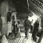 """OFP Sarawak 1965  -  """"Visiting"""" Longhouse Village(c)."""