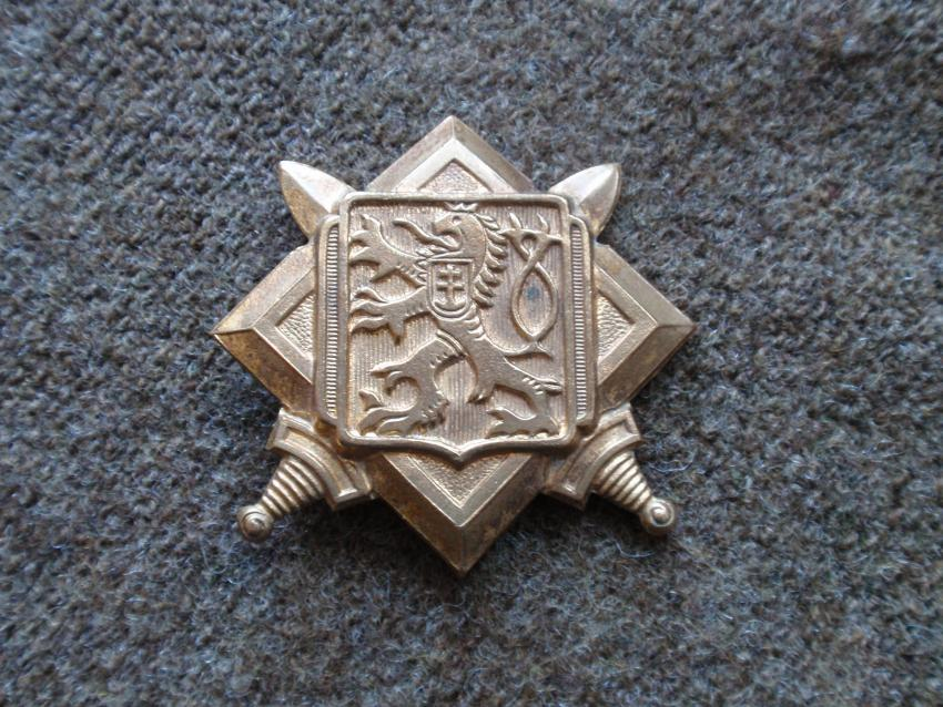 Free Czechoslovakian cap badge.