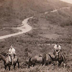 Members of No.5 Commando on horseback